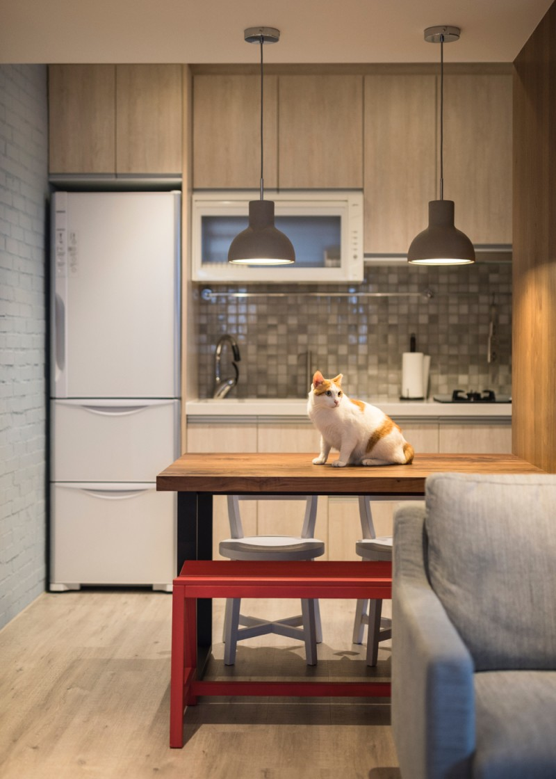 地面上保持乾淨暢通的設計 讓貓咪能在空間中自在地走動